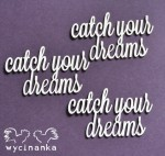 "CATCH YOUR DREAMS - napisy ""catch your dreams"""