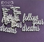 "CATCH YOUR DREAMS - napisy ""follow your dreams"""